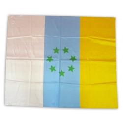 Bandera canària