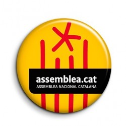 Xapa ANC boli estelada i logo