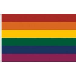 Bandera de l'arc de Sant Martí del movimient gay