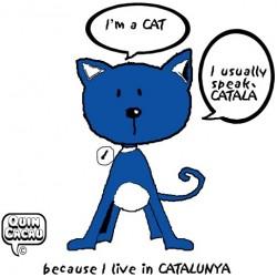 Samarreta Quin Cacau - CAT Vermella