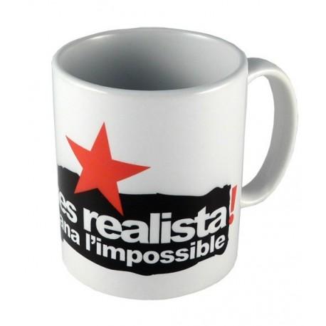 Tassa Sigues realista demana l'impossible