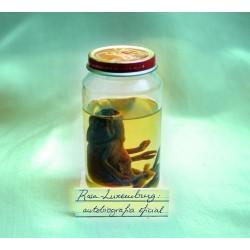 CD Rosa-Luxemburg Autobiografia oficial