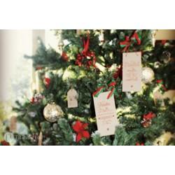 kit postals de nadal