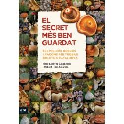 Llibre El secret més ben guardat