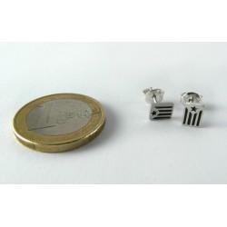 Arracades plata estelada rectangular