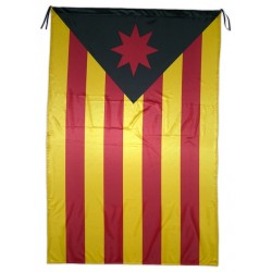 Bandera estelada llibertària