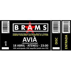Entrada concert Brams a Avià