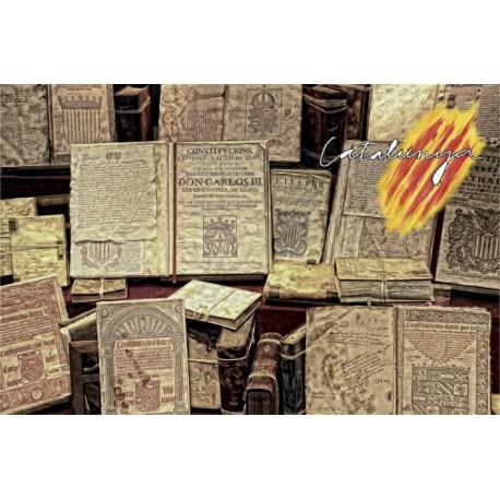 Làmina Constitucions Catalanes