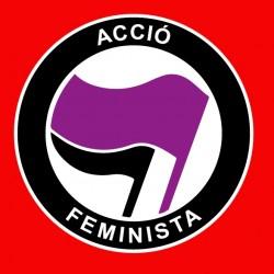 "Samarreta NOIA ""Acció feminista"""