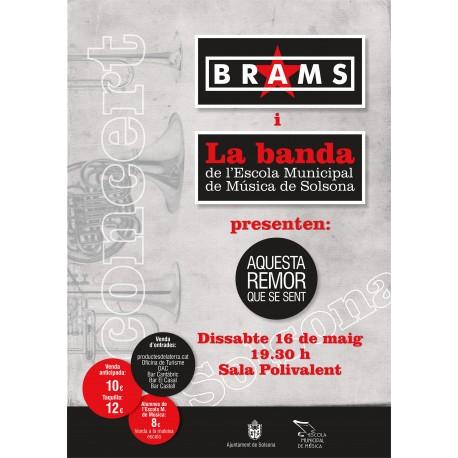 Entrada concert Brams+Banda de l'EMMS a Solsona