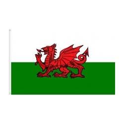 Bandera país de Gal·les