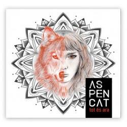 CD Aspencat - tot és ara