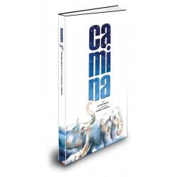 Llibre Camina, d'Alguer Miquel i Gemma Capdevila