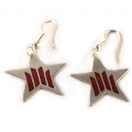 Arracades de plata esmaltades estrella