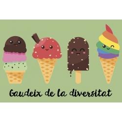 Samarreta NOIA Gaudeix de la diversitat - gelats