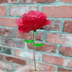 Rosa Sant Jordi de paper retallable A4