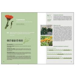Llibre El llibre de les planres silvestres comestibles. Volum 1