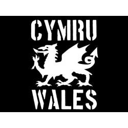 Samarreta Cymru - Wales