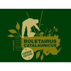 Samarreta: Boletairus