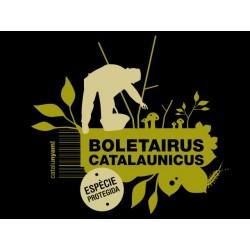 Samarreta noia Boletairus