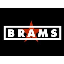 Samarreta m/llarga Brams